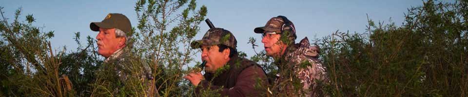 High Volume Duck Hunting