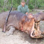Big Five Hippo Trophy