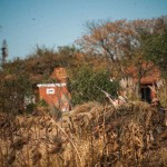 Dove Hunting Lodge