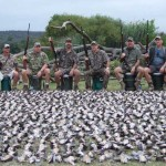 Dove Hunting Party