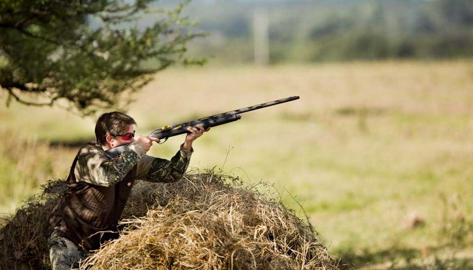 Pigeon shooting in Argentina