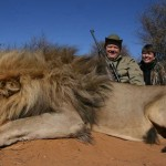 Trophy Lion Hunts
