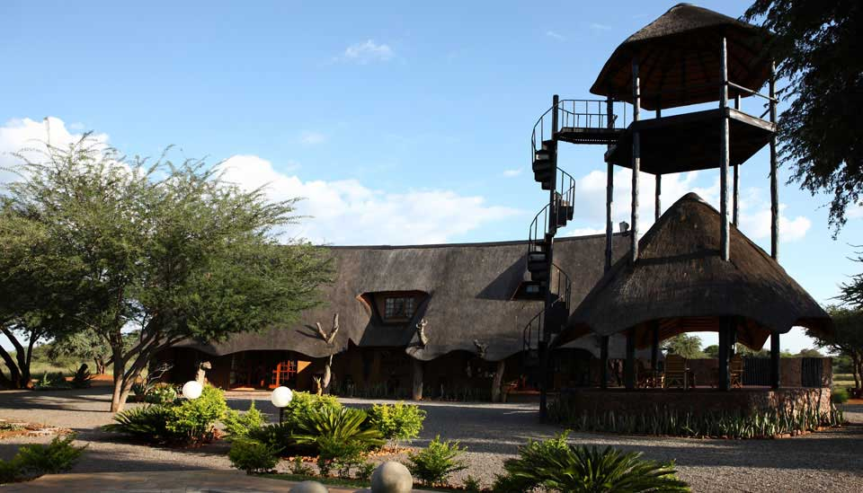 Game Hunting in South Africa South Africa Hunting Lodge