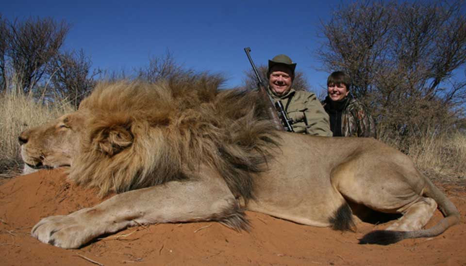 Game Hunting in South Africa South Africa Lion Hunting
