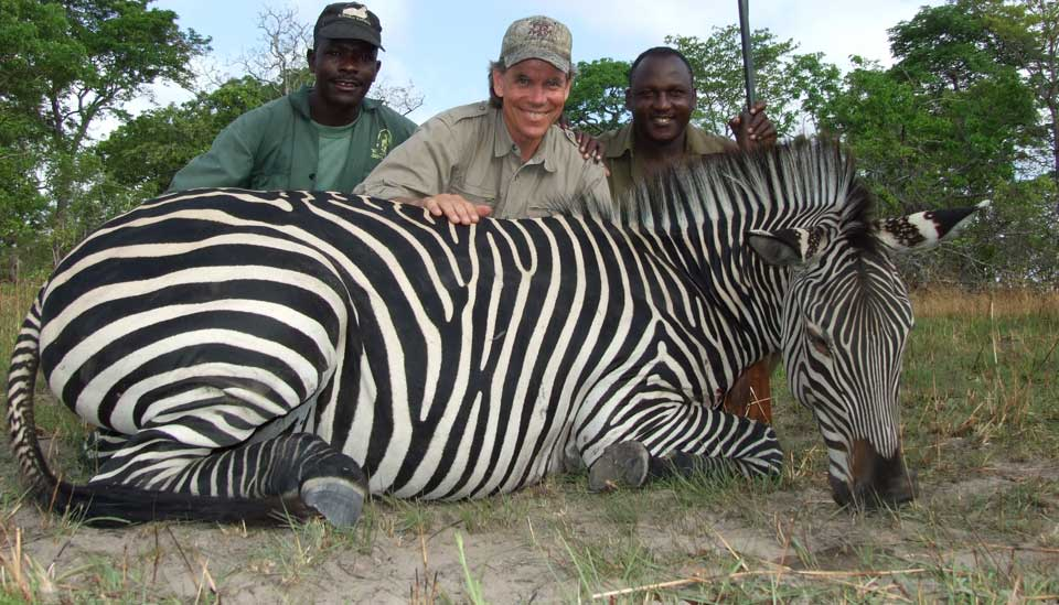 Trophy Zebra Hunting